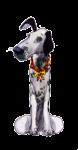 1 One Dog - John Duffield duffield-design