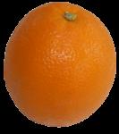 1 Orange Bev Dunbar Maths Matters