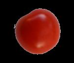 1-cherry-tomato-Bev-Dunbar-Maths-Matters
