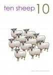 Multiples of 10 to 90 Poster - 10 Sheep Bev Dunbar Maths Matters