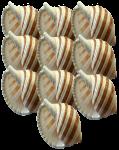 Place Value 10 seashells Bev Dunbar Maths Matters