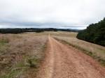 100 hectares Bev Dunbar Maths Matters