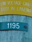 1195 Bev Dunbar Maths Matters