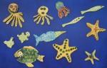 12 Sea Creatures Bev Dunbar Maths Matters
