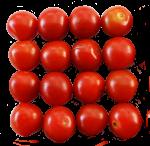 16-cherry-tomatoes-Bev-Dunbar-Maths-Matters