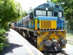 1771 Train Bev Dunbar Maths Matters