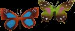 2 Butterflies Bev Dunbar Maths Matters
