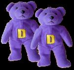 2 Purple Bears Bev Dunbar Maths Matters