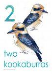 2 kookaburras Poster John Duffield duffield-design