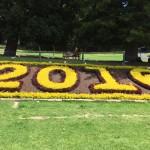 2016 Garden Bed Bev Dunbar Maths Matters