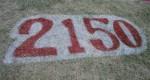 2150 Bev Dunbar Maths Matters