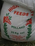 25 kg bag of pollard for the cows and horses Bev Dunbar Maths Matters