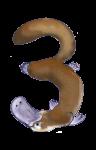 3 Platypus Three - John Duffield duffield-design