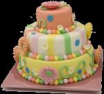 3 layer cylinder cake Bev Dunbar Maths Matters