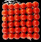 36-cherry-tomatoes-Bev-Dunbar-Maths-Matters