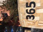 365 House Number Bev Dunbar Maths Matters