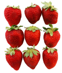 3x3 strawberries square number pattern Bev-Dunbar-Maths-Matters