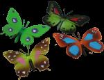 4 Butterflies Bev Dunbar Maths Matters