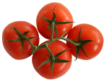 Count by 4s - Tomatoes Bev Dunbar Maths Matters