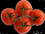 4 Tomatoes Bev Dunbar Maths Matters copy