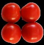 4-cherry-tomatoes-Bev-Dunbar-Maths-Matters
