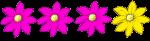 4 flowers - 3 quarters pink - fractions - John Duffield