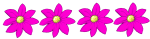 4 flowers - all pink - fractions - John Duffield