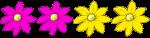 4 flowers - half pink half yellow - fractuons - John Duffield