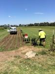 4 hectares of grass at a turf farm Bev Dunbar Maths Matters