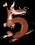 5 Kangaroo Five - John Duffield duffield-design