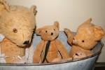 Count by 5s - Old Bears Bev Dunbar Maths Matters