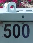 500 Bev Dunbar Maths Matters