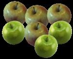 6 apples Bev Dunbar Maths Matters