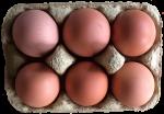 6 eggs Bev Dunbar Maths Matters