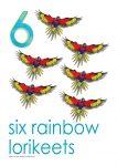 6 rainbow lorikeets Poster John Duffield duffield-design