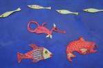 7 Sea Creatures Bev Dunbar Maths Matters
