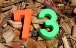 73 Bev Dunbar Maths Matters