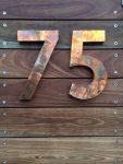 75 Bronte Bev Dunbar Maths Matters