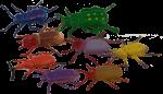 8 Beetles Bev Dunbar Maths Matters