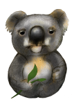 8 Koala Eight - John Duffield duffield-design