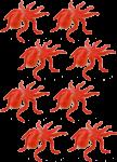 8 octopuses Bev Dunbar Maths Matters