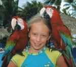 8.5 cm long beaks Enya and 2 macaws Bev Dunbar Maths Matters