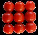 9-cherry-tomatoes--Bev-Dunbar-Maths-Matters