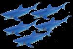 Add & Subtract 5 Blue Sharks Bev Dunbar Maths Matters