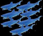Add & Subtract 7 Blue Sharks Bev Dunbar Maths Matters