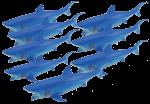 Add & Subtract 8 Blue Sharks Bev Dunbar Maths Matters