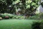 Area of backyard lawn Bev Dunbar Maths Matters