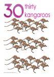 30 kangaroos Poster John Duffield duffield-design