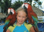 Average mass of a Macaw? Bev Dunbar Maths Matters
