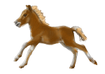 Baby Horse 50 kg - John Duffield duffield-design
